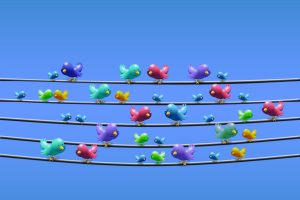 Passarinhos do Twitter